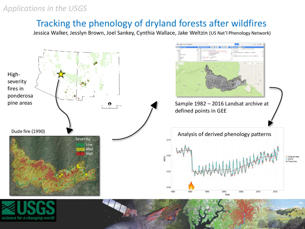 Tracking the phenology of dryland forests after...