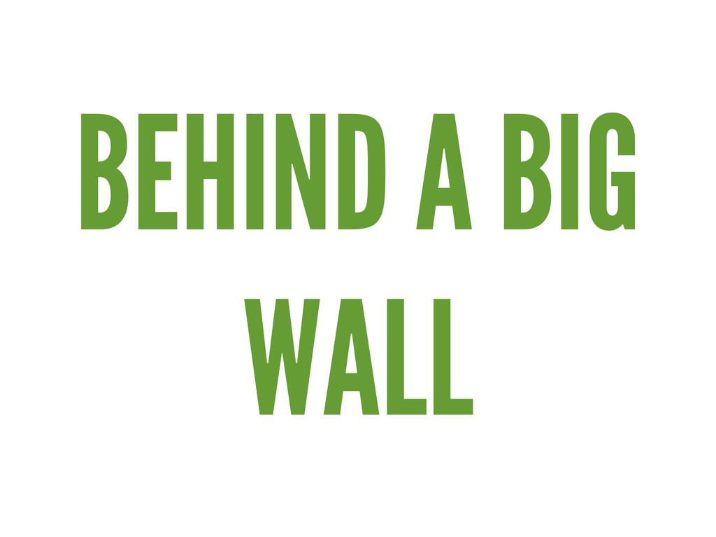 BEHIND A BIG WALL