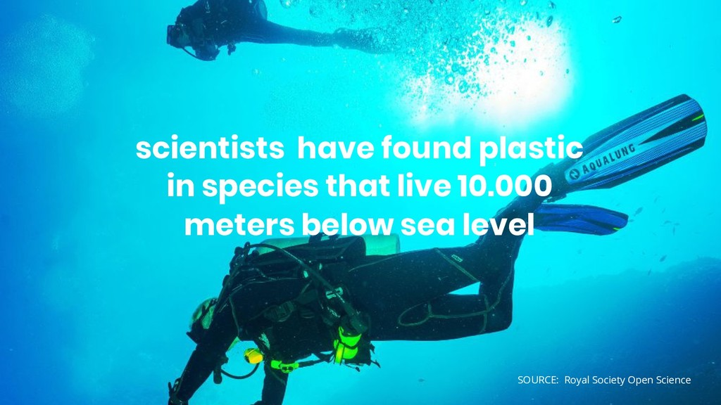 scientists have found plastic in species that l...