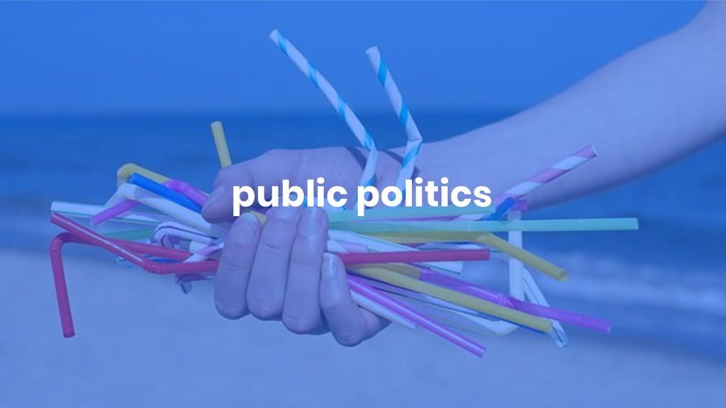 public politics