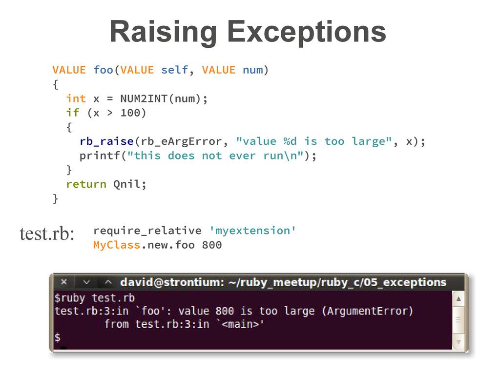 Raising Exceptions VALUE foo(VALUE self, VALUE ...