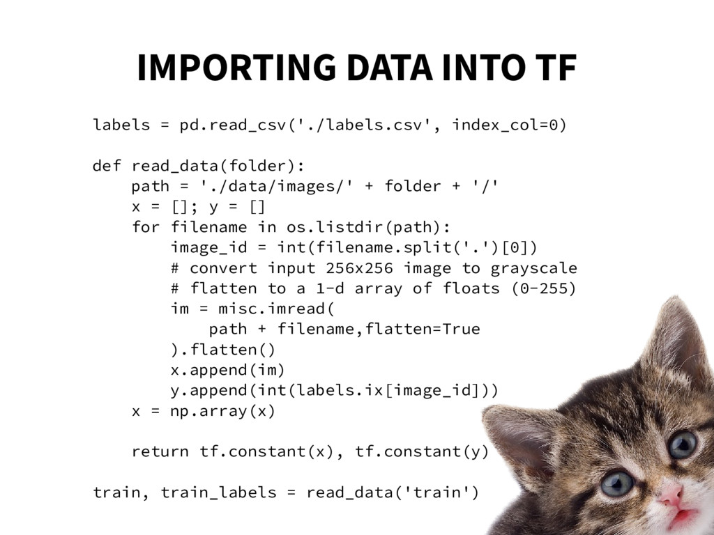 IMPORTING DATA INTO TF labels = pd.read_csv('./...