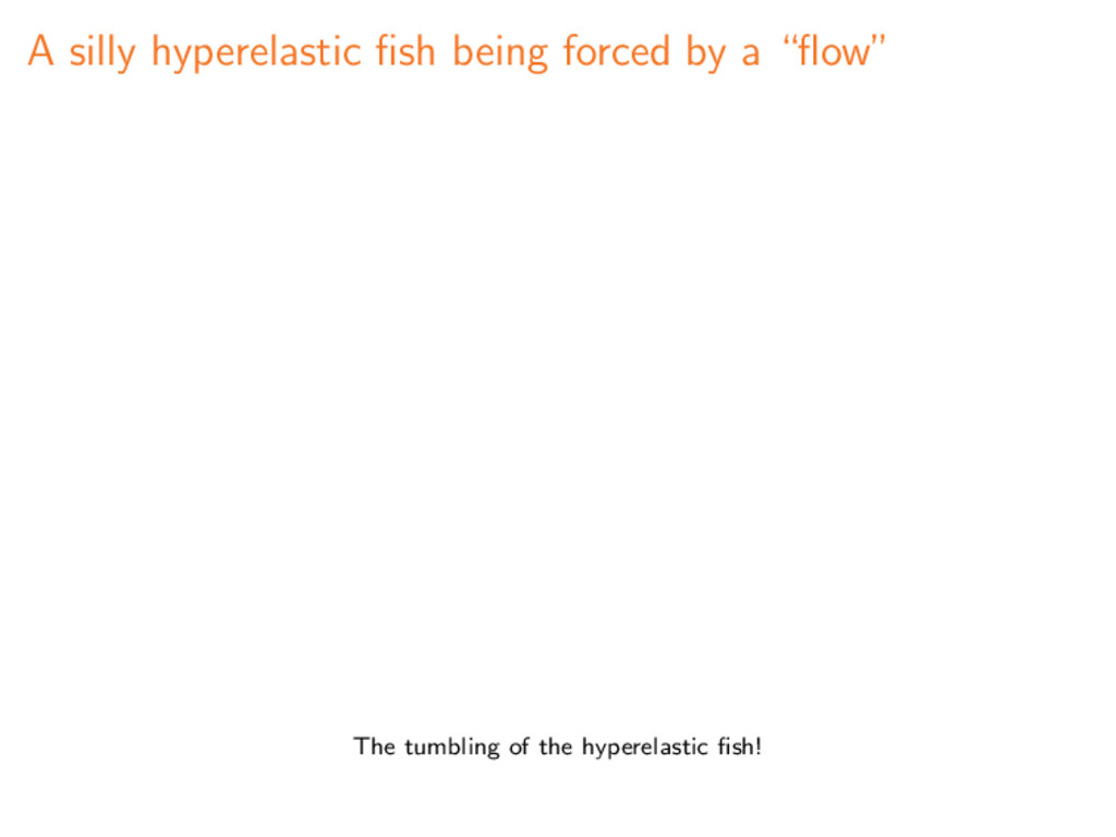 "A silly hyperelastic fish being forced by a ""flow..."