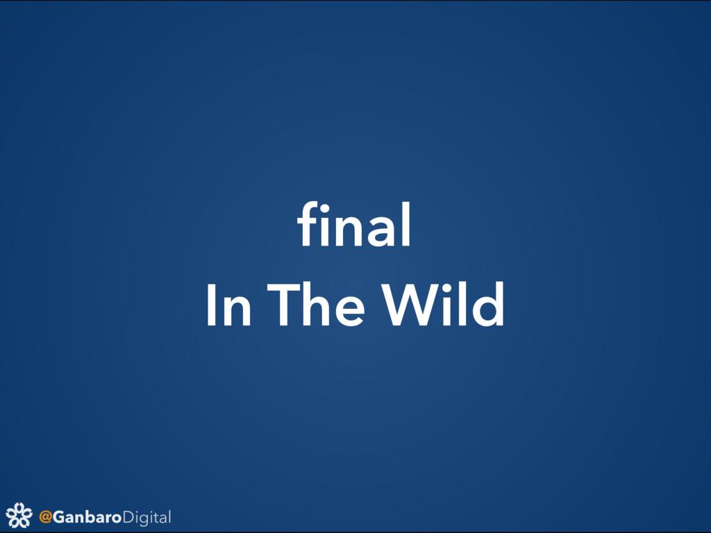 @GanbaroDigital final In The Wild