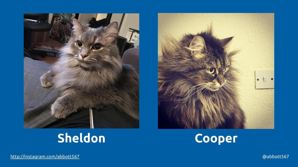 @abbott567 Sheldon Cooper http://instagram.com/...