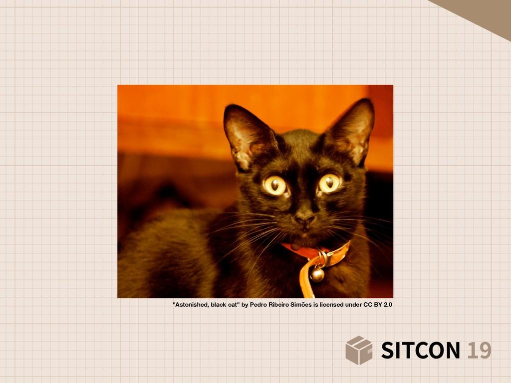 """""""Astonished, black cat"""" by Pedro Ribeiro Simões..."""