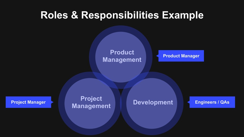 Roles & Responsibilities Example Project Manage...