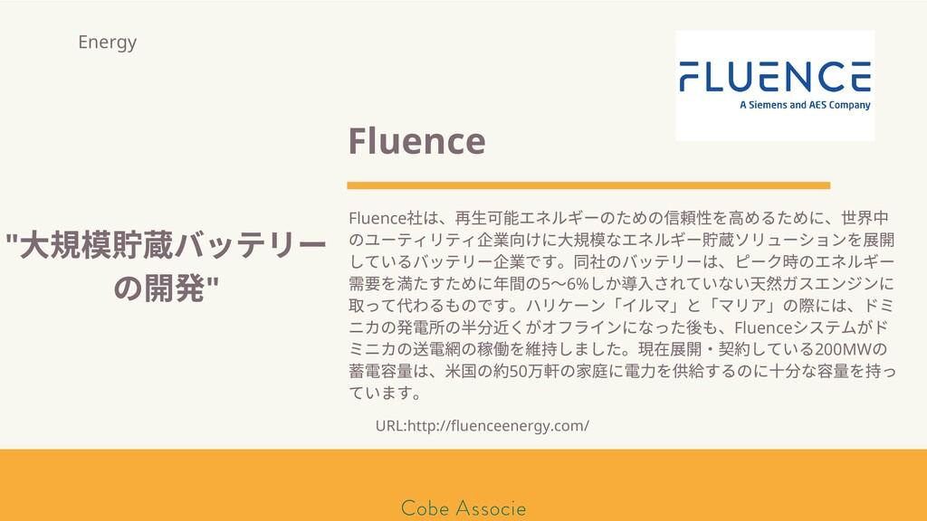 モールソン&フラー 築2020 Fluence Fluence は、再⽣可 エネルギーのための...