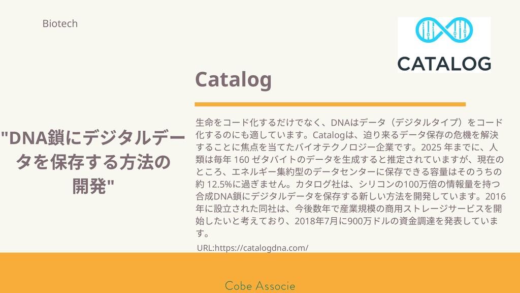 Catalog ⽣ をコード するだけでなく、DNA はデータ(デジタルタイプ)をコード する...