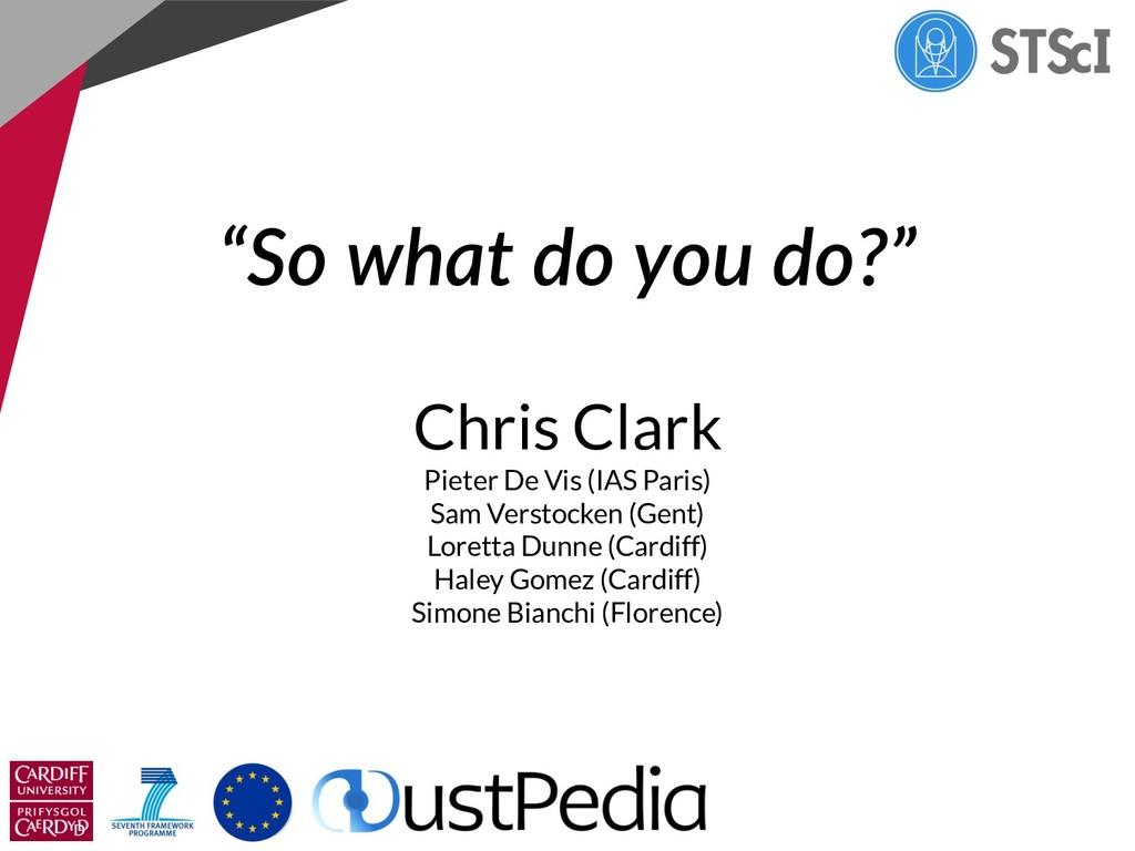 """""""So what do you do?"""" Chris Clark Pieter De Vis ..."""