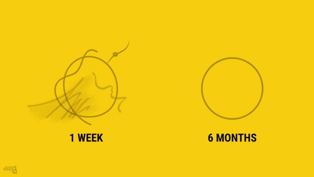 6 MONTHS 1 WEEK