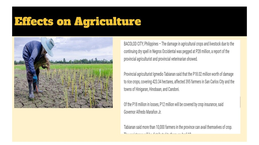 Effects on Agriculture