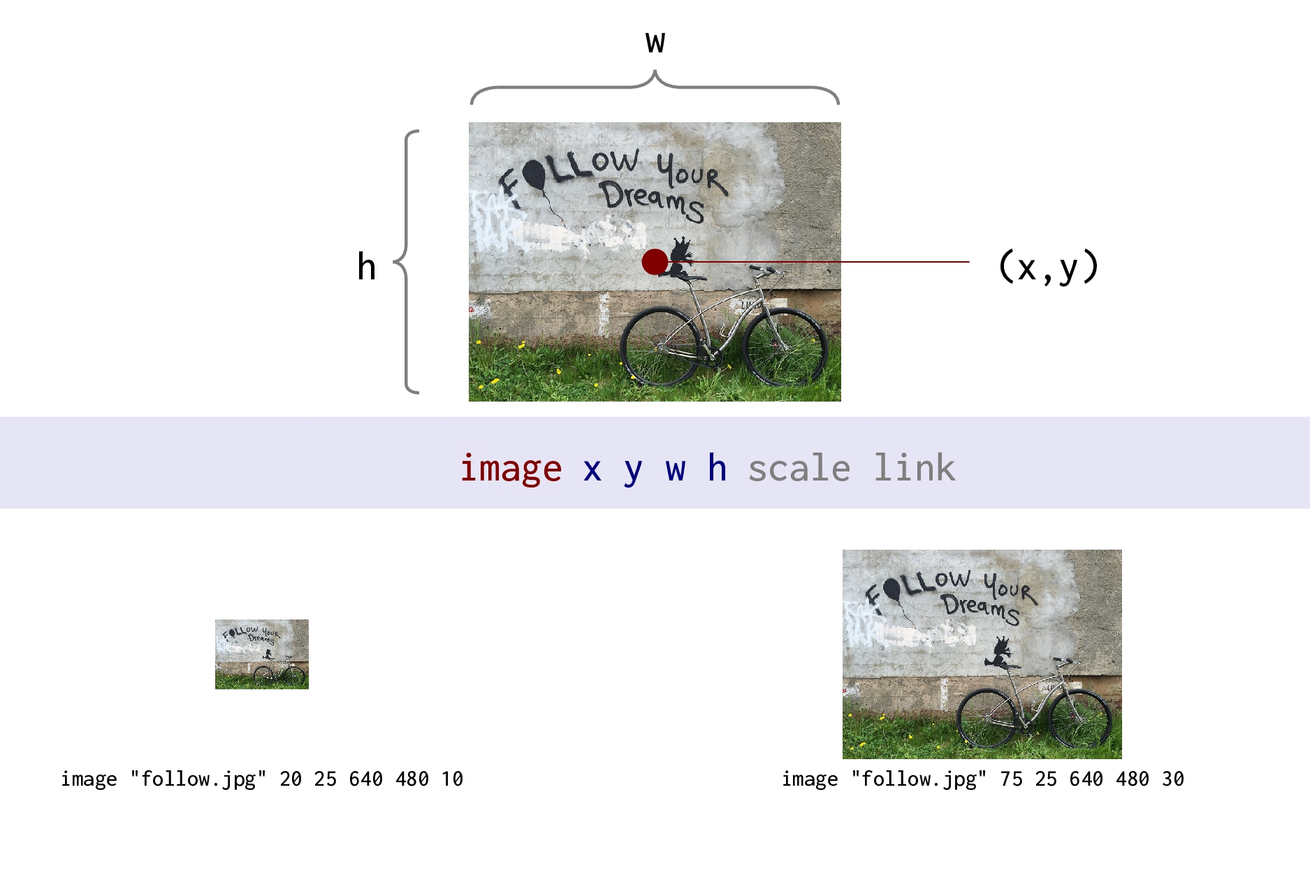 Miscellaneous Loop Polar coordinate (x) Polar c...