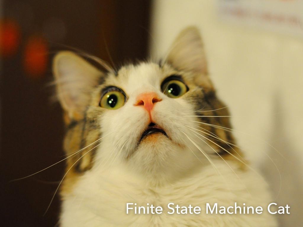 Finite State Machine Cat