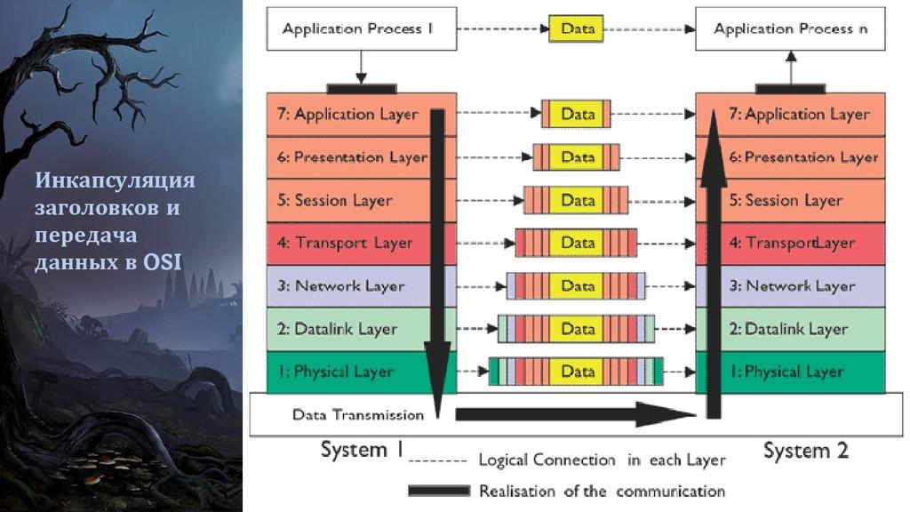 Инкапсуляция заголовков и передача данных в OSI