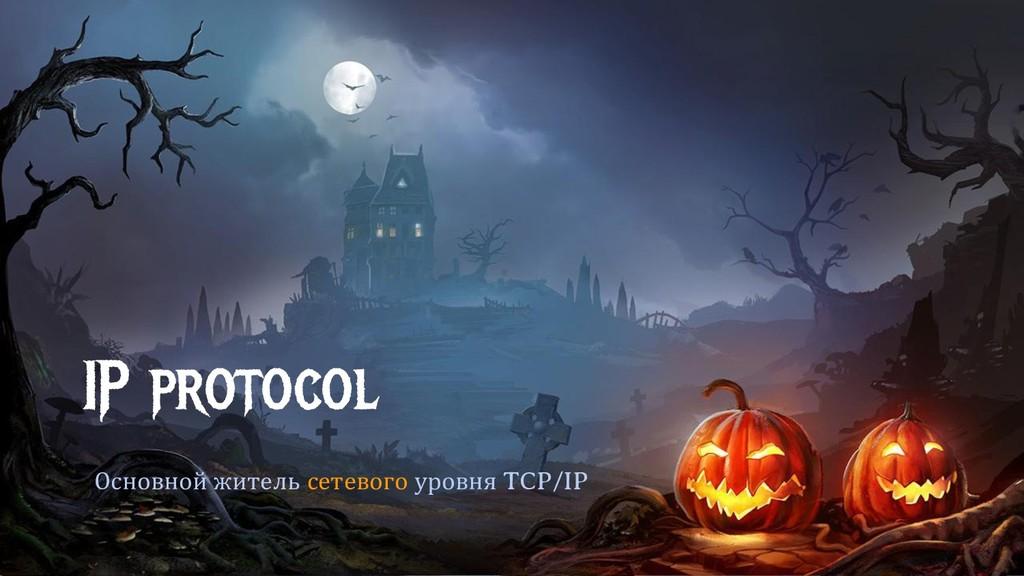 IP protocol Основной житель сетевого уровня TCP...