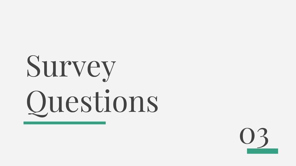 Survey Questions 03