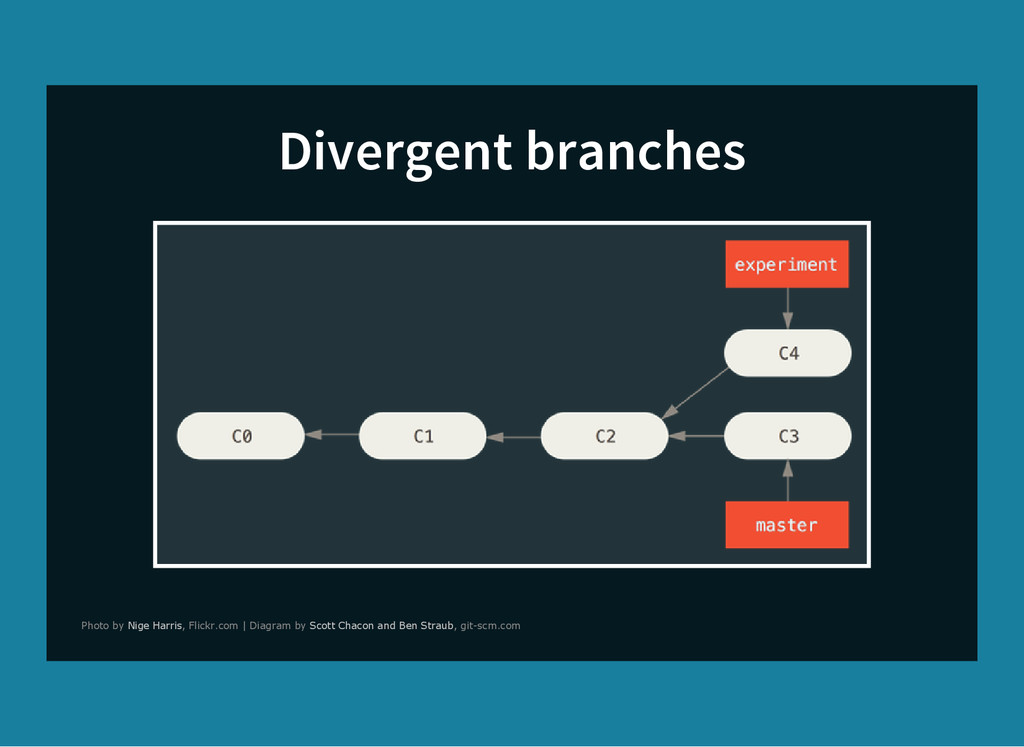 Divergent branches Photo by , Flickr.com | Diag...
