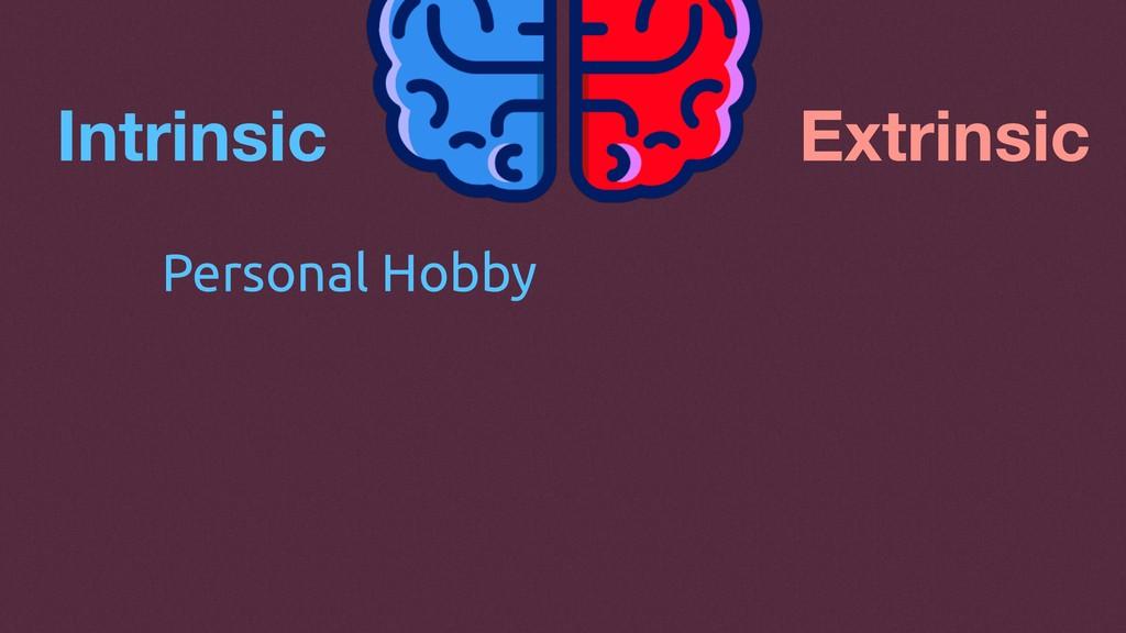 Intrinsic Extrinsic Personal Hobby