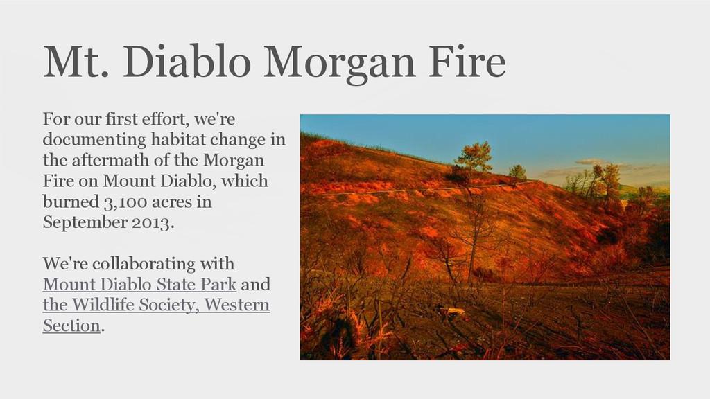 Mt. Diablo Morgan Fire For our first effort, we...