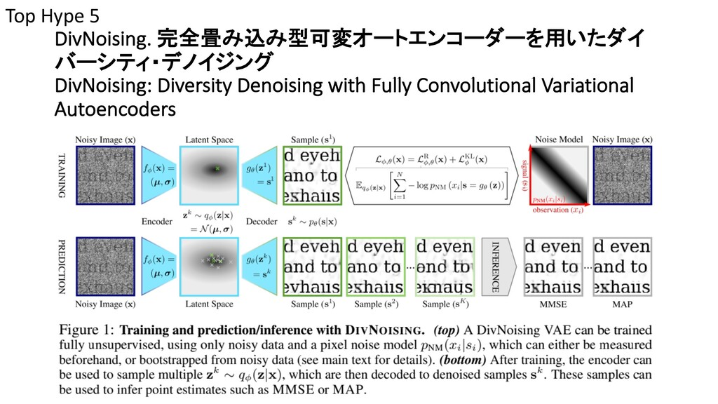 DivNoising. 完全畳み込み型可変オートエンコーダーを用いたダイ バーシティ・デノイジ...