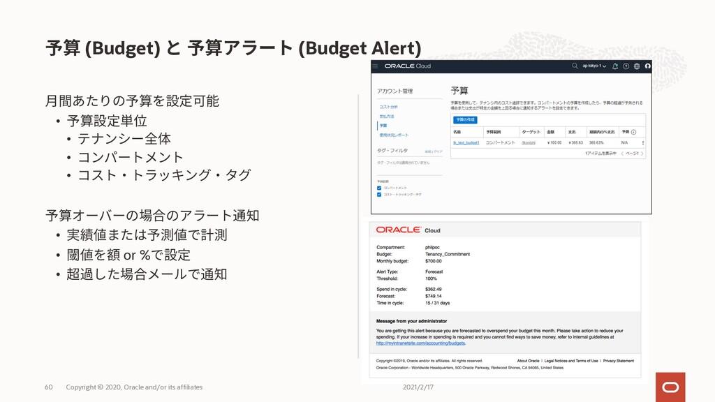 • • • • • • or % • (Budget) (Budget Alert) 2021...