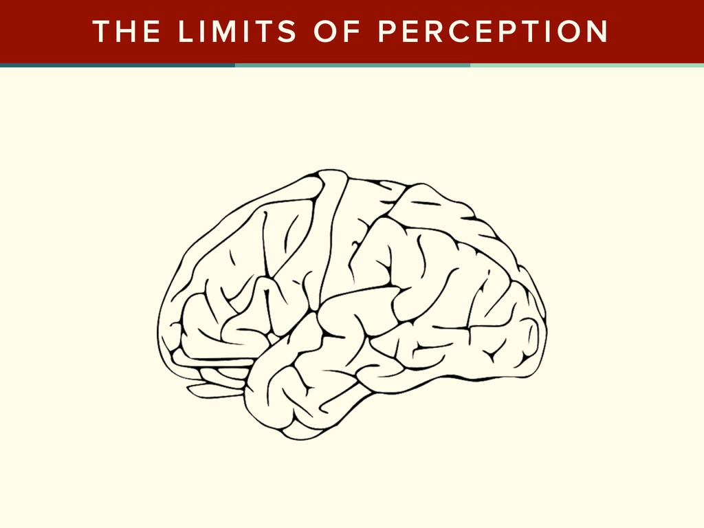 THE LIMITS OF PERCEPTION
