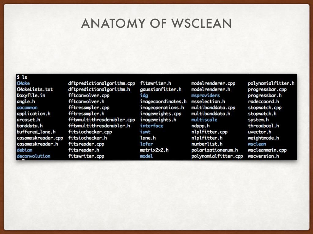 ANATOMY OF WSCLEAN