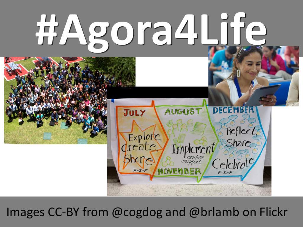 #Agora4Life Images CC-BY from @cogdog and @brla...
