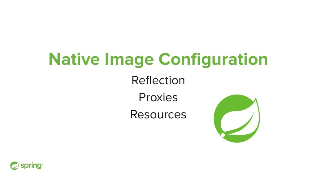 Native Image Configuration Reflection Proxies Res...