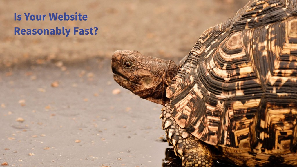 Is Your Website Reasonably Fast?