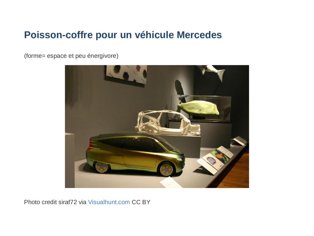 Poissoncoffre pour un véhicule Mercedes (forme...