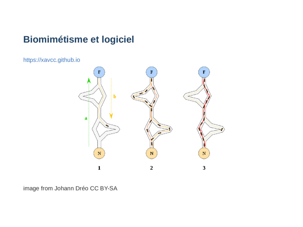 Biomimétisme et logiciel https://xavcc.github.i...