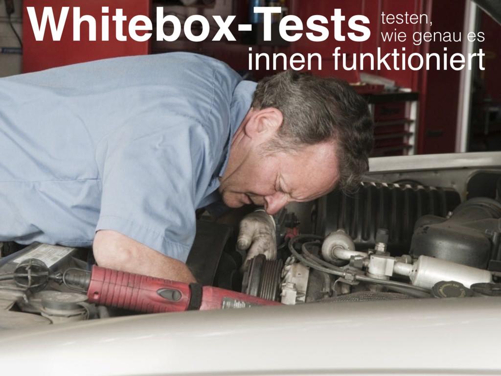 Whitebox-Tests wie genau es innen funktioniert ...