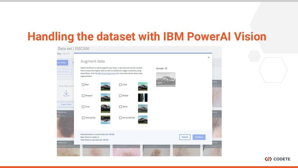 Handling the dataset with IBM PowerAI Vision