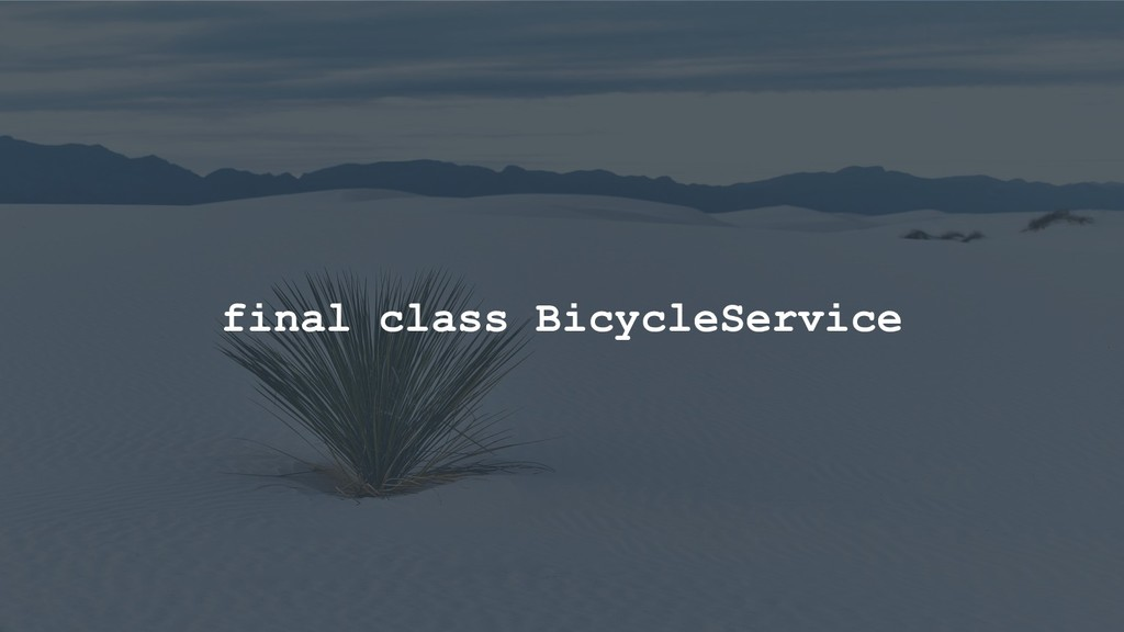 final class BicycleService