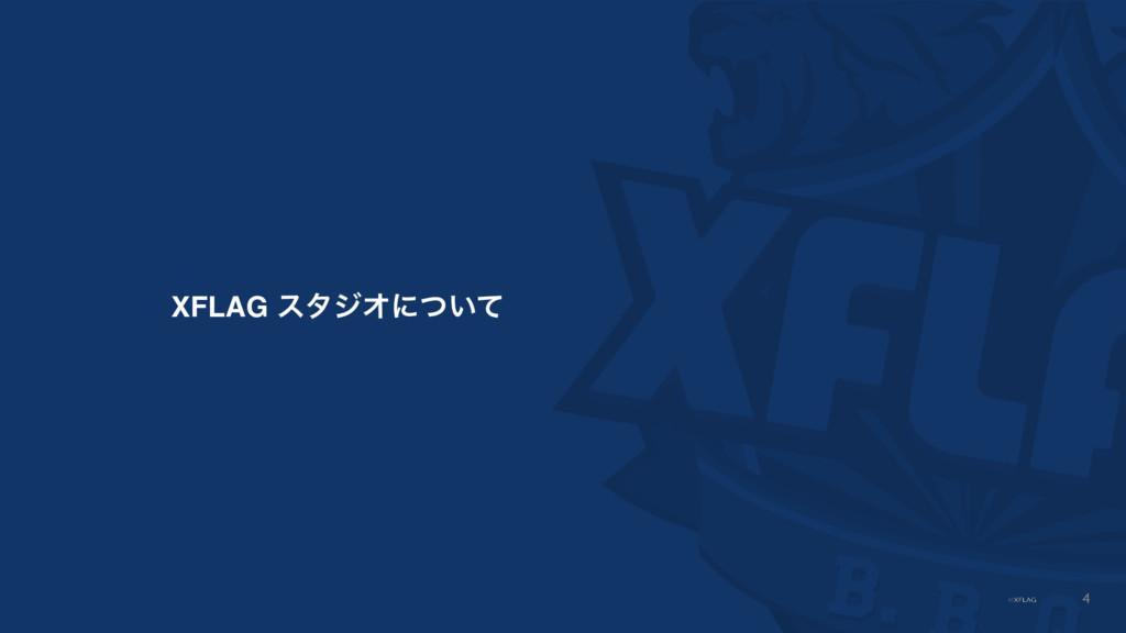 XFLAG ελδΦʹ͍ͭͯ 4