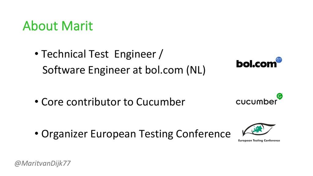 About Marit • Technical Test Engineer / Softwar...