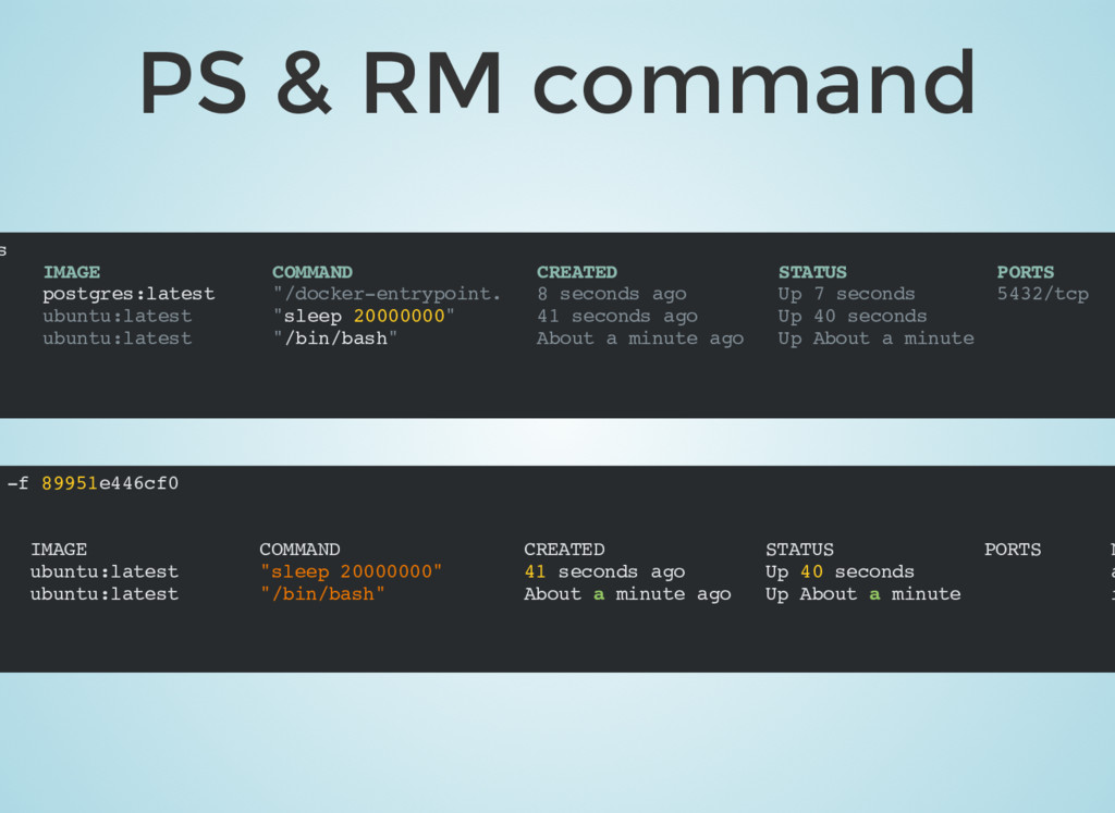 PS & RM command -f 89951e446cf0 IMAGE COMMAND C...