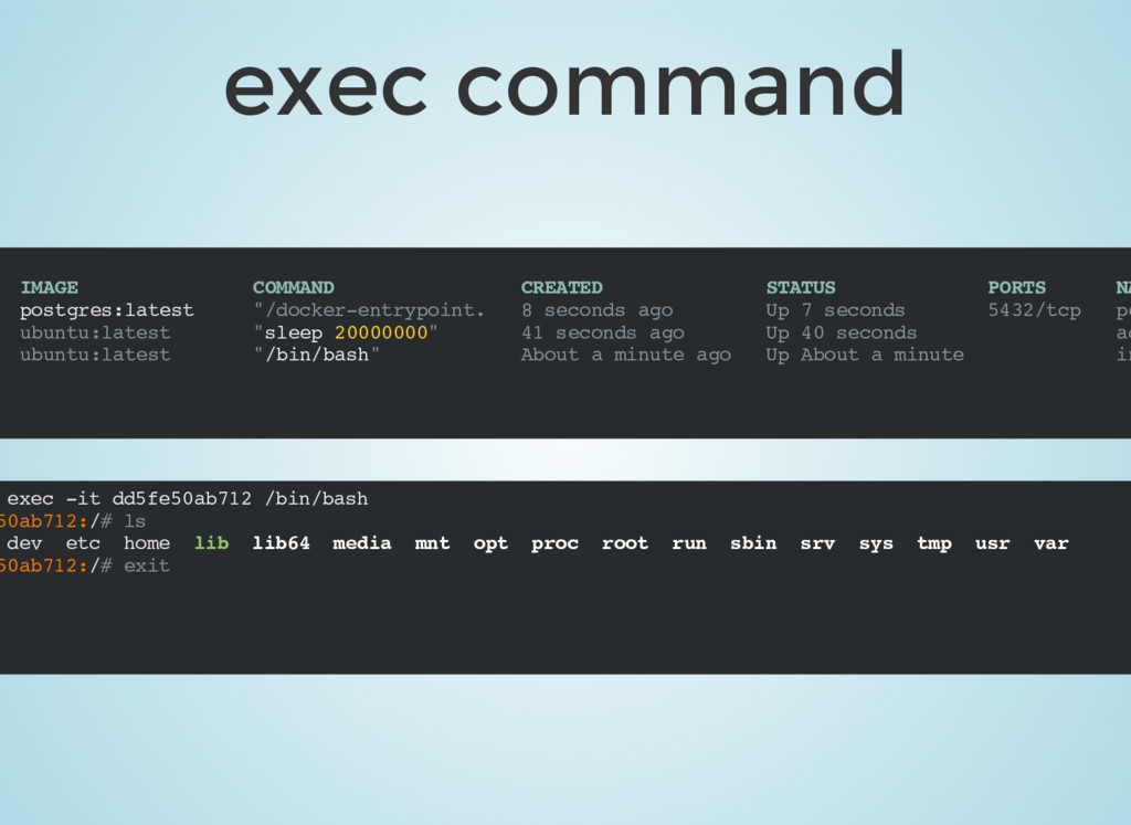 exec command IMAGE COMMAND CREATED STATUS PORTS...