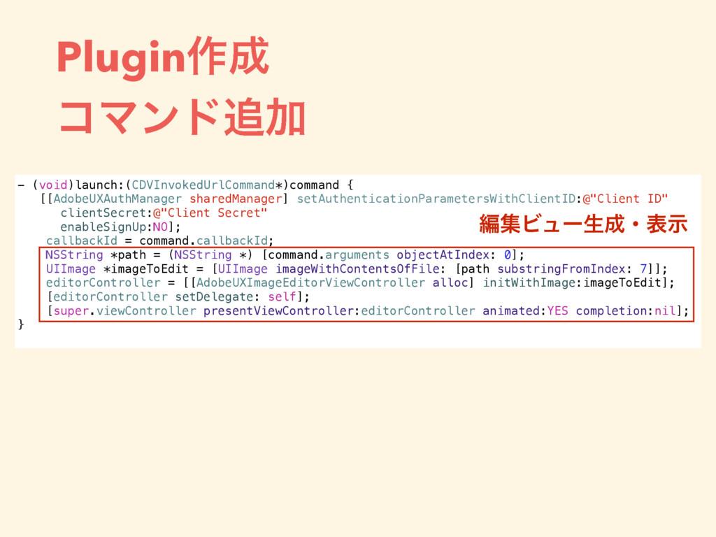 Plugin࡞ ίϚϯυՃ - (void)launch:(CDVInvokedUrlC...