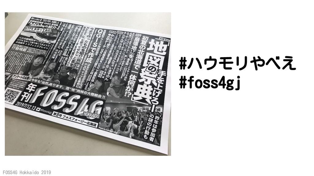 FOSS4G Hokkaido 2019 #ハウモリやべえ #foss4gj