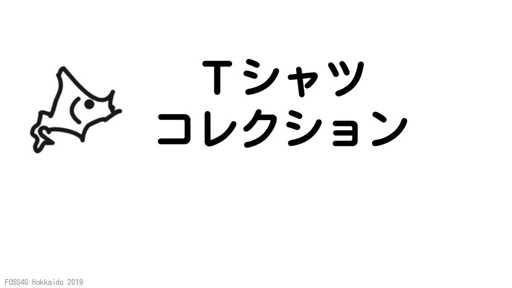 FOSS4G Hokkaido 2019 Tシャツ コレクション