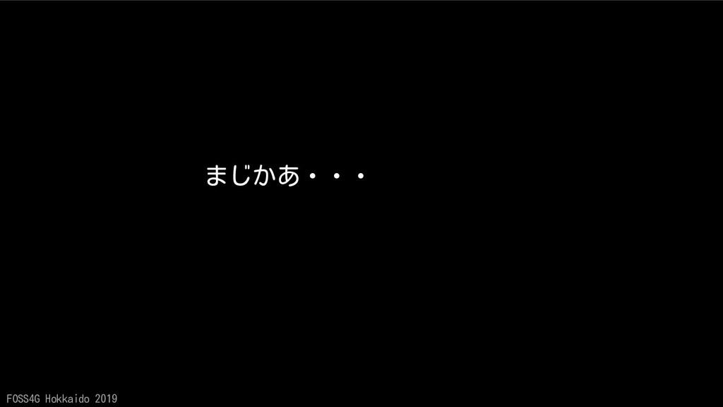 FOSS4G Hokkaido 2019 まじかあ・・・