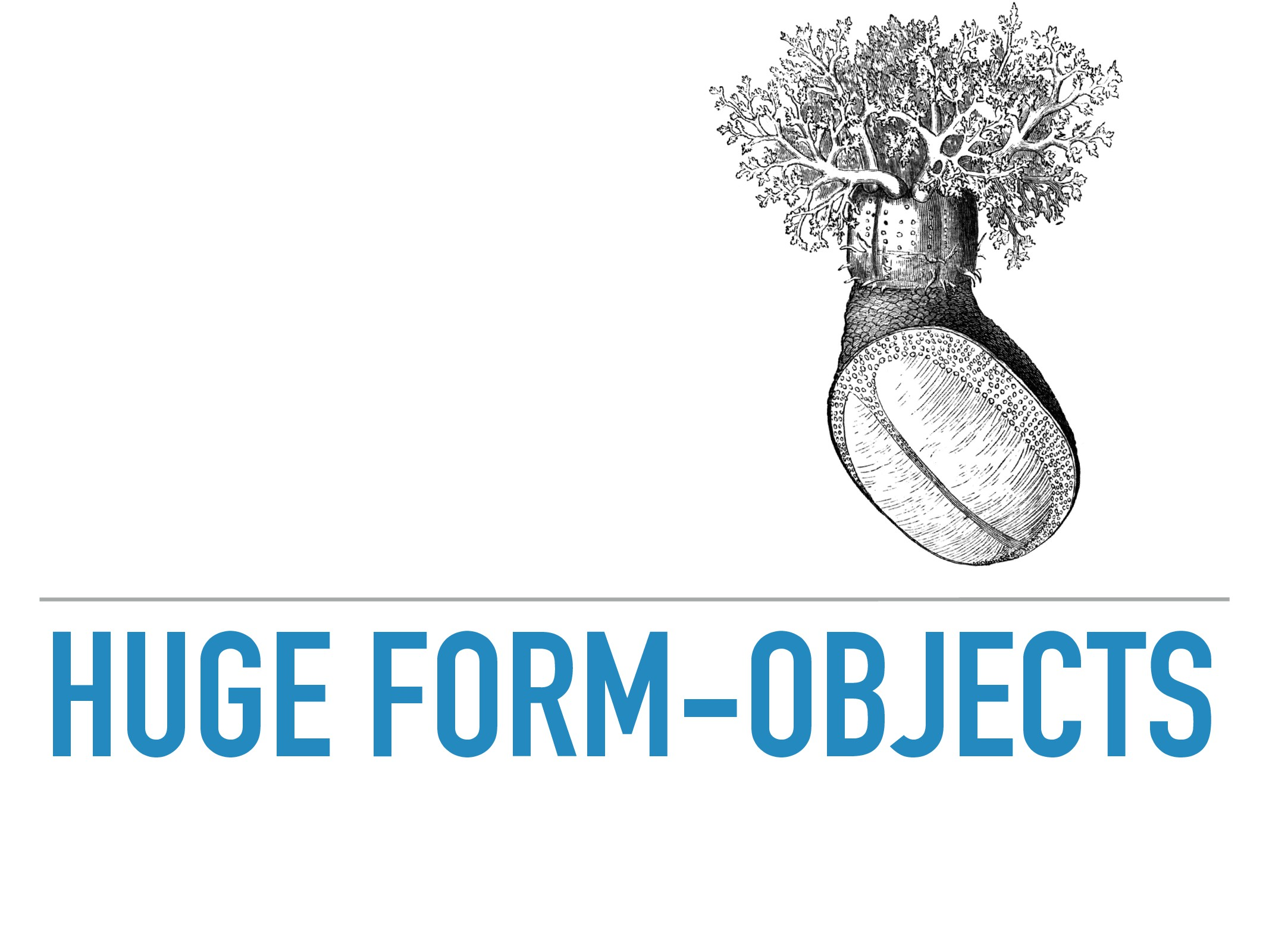 HUGE FORM-OBJECTS