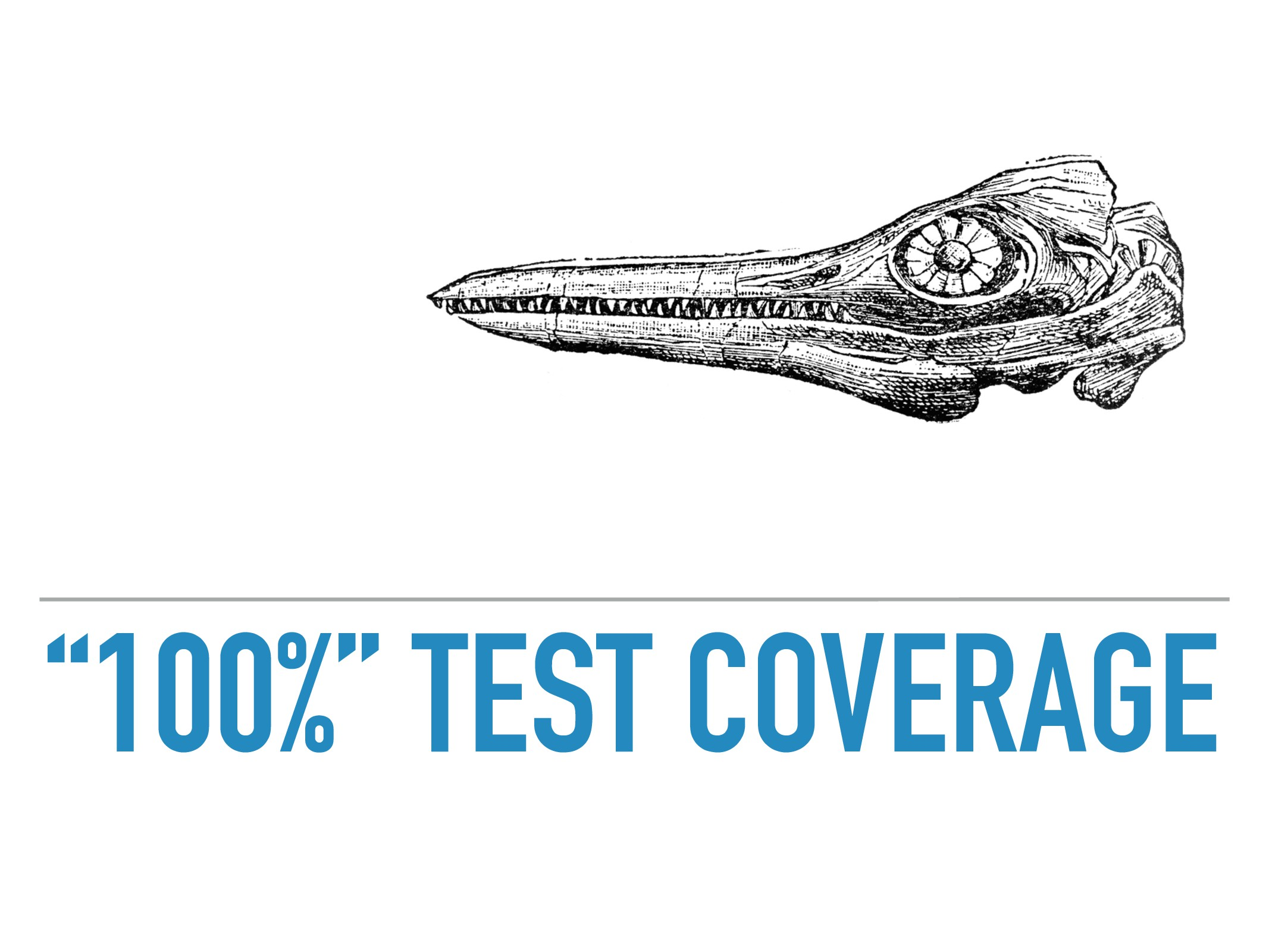 """""""100%"""" TEST COVERAGE"""