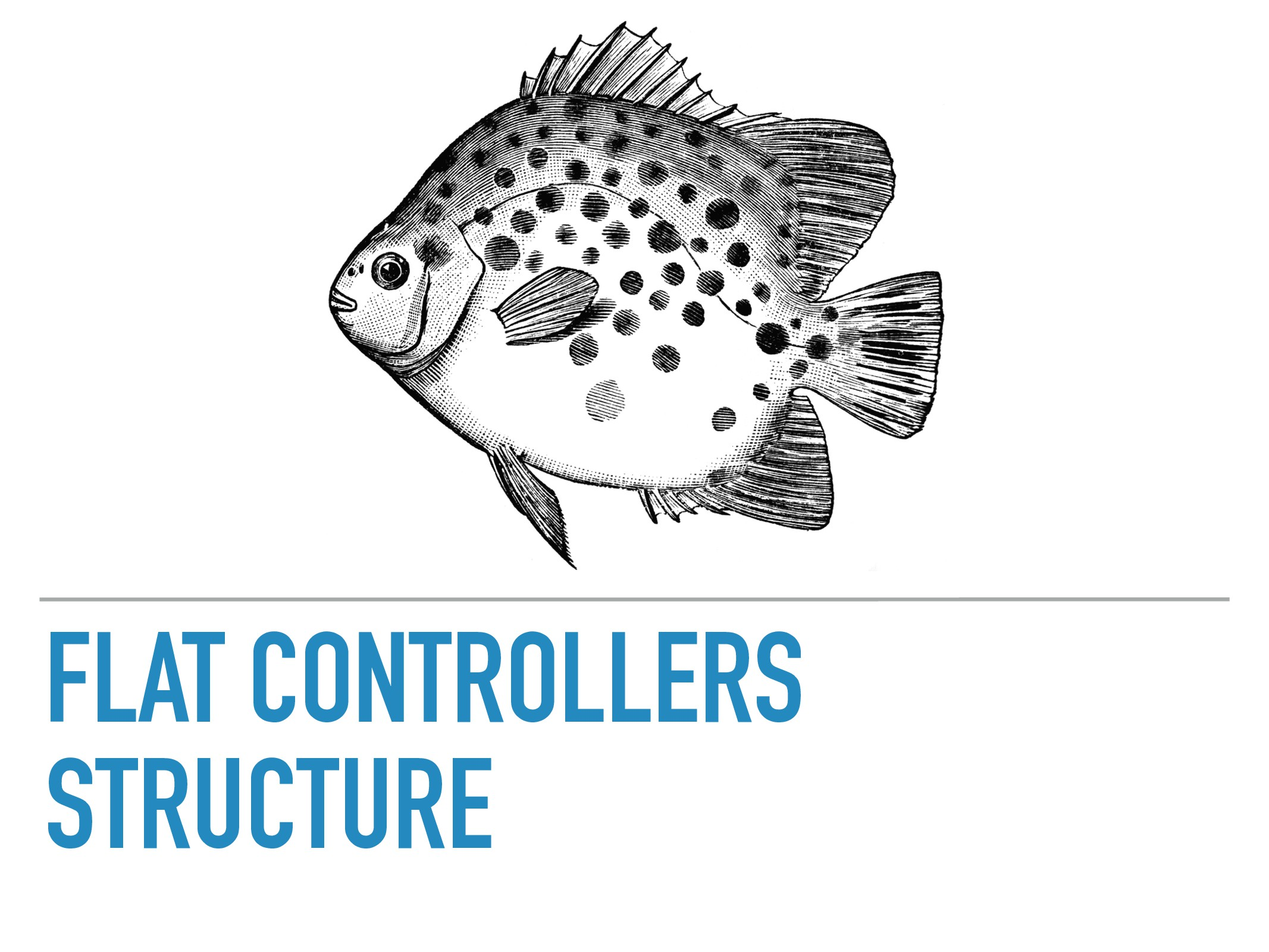 FLAT CONTROLLERS STRUCTURE