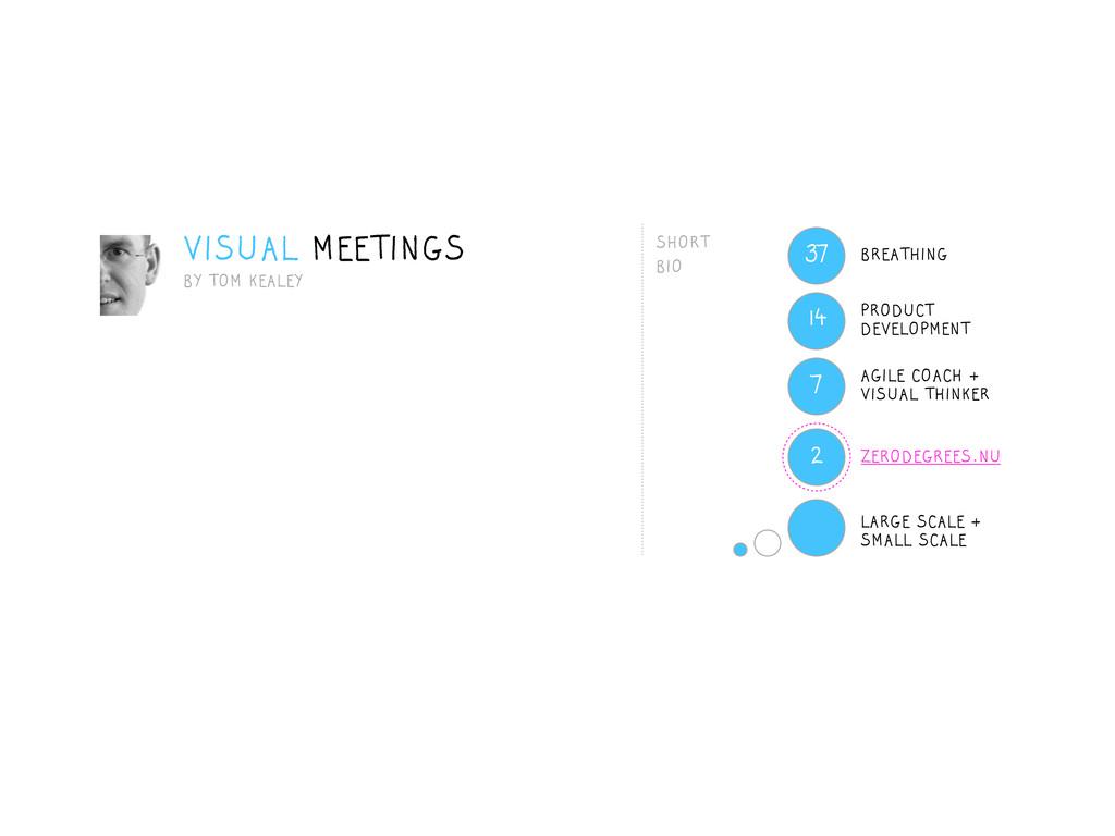 VISUAL MEETINGS BY TOM KEALEY ZERODEGREES.NU 14...