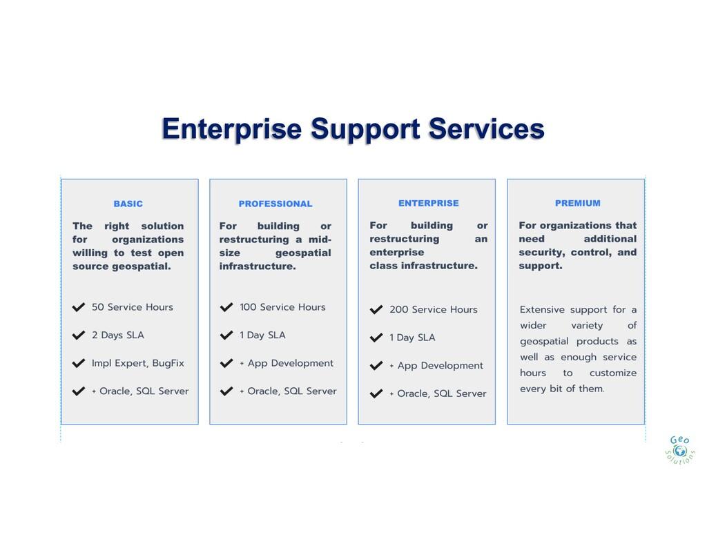 Enterprise Support Services