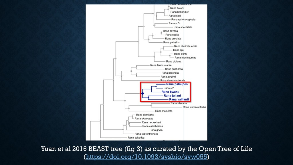 Yuan et al 2016 BEAST tree (fig 3) as curated b...